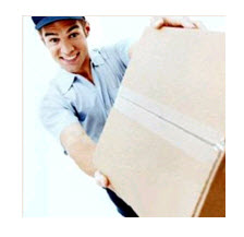 Pedido Envío de Paquetes Surmail