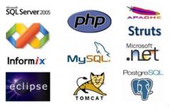 Desarrollo de Softwares Personalizados
