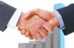 Asesoramiento sobre Nuevas Oportunidades de Negocios
