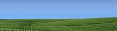 Ensayos - Red Nacional de Evaluación de Cultivares de Soja
