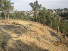Estudio previo y prepación del terreno