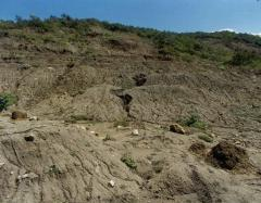 Investigaciones de  geología