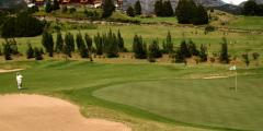 Rental of golf grounds