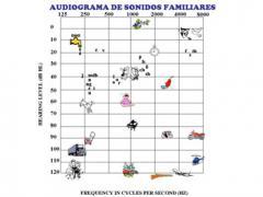 Examen funcional auditivo