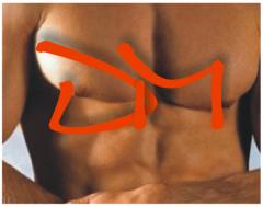 Depilación Masculina sin Dolor