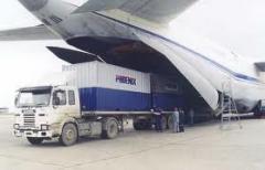 Consolidados de Exportación