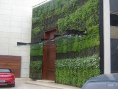 Riego de Paredes Vegetadas o Muros Verdes